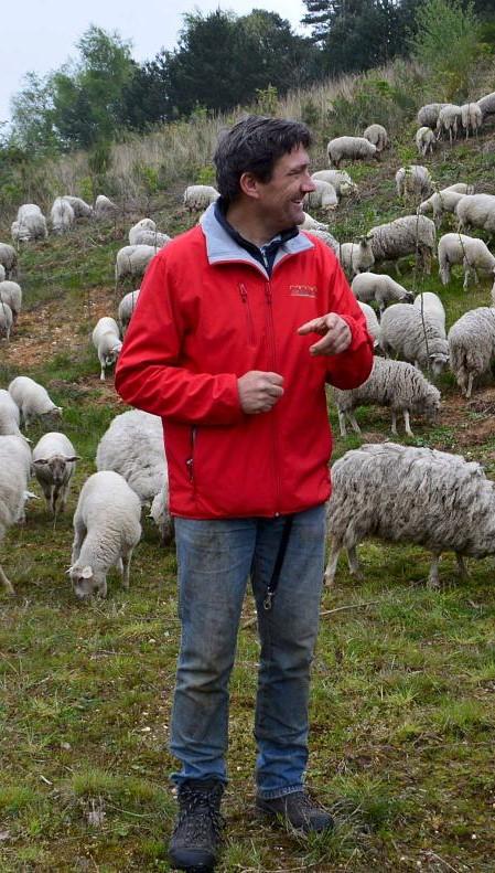 foto Sjraar 2017 schapenbeagrazing